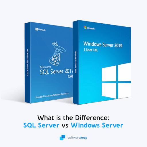 What is the Difference Between SQL Server and Windows Server?